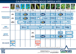 calendario fenologico